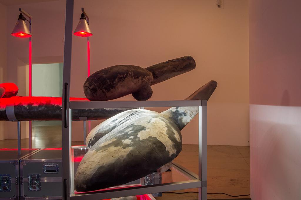 Installation shot, Museum für Neue Kunst